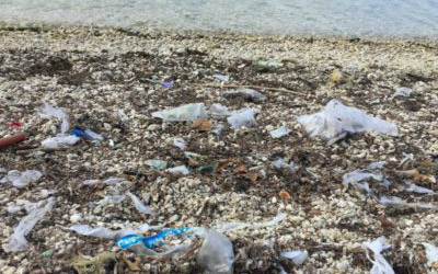 Plastics & the Ocean – The Size of the Problem – Part 1 of 3