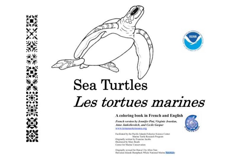 - Sea Turtle Coloring Book - Big Blue Network